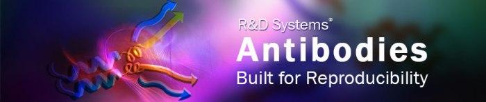 antibody-reproducibility-banner.jpg